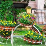 5 Amazing Container gardening designs